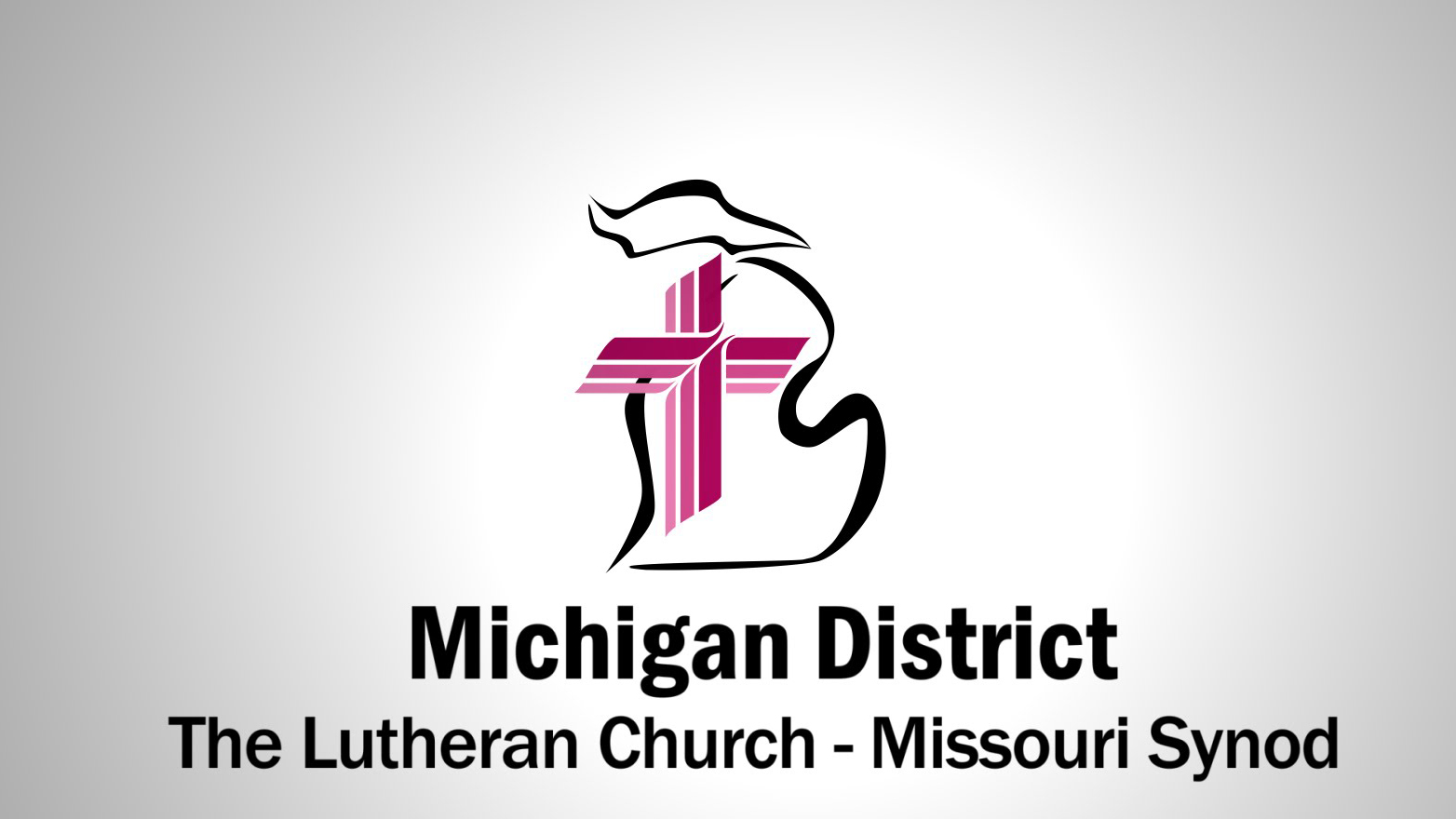 LCMS-Michigan District